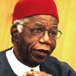The Man Achebe And Politics