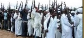 150 Gunmen Storm Village, Kill 48