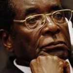 Between Mugabe, Obasanjo and Orwellian pigs By Abimbola Adelakun