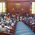 Police Intervention Fund : Reps Query Inclusion In Interior Ministry's Budget