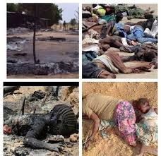 #BornoYobeMassacre: The Fire Next Time – Ogunyemi Bukola