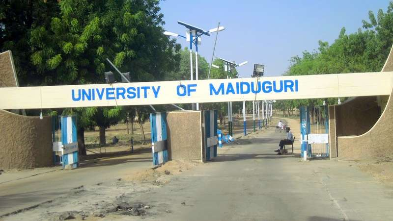 University Of Maiduguri Postpones Exams Following Suicide Bombing Attack
